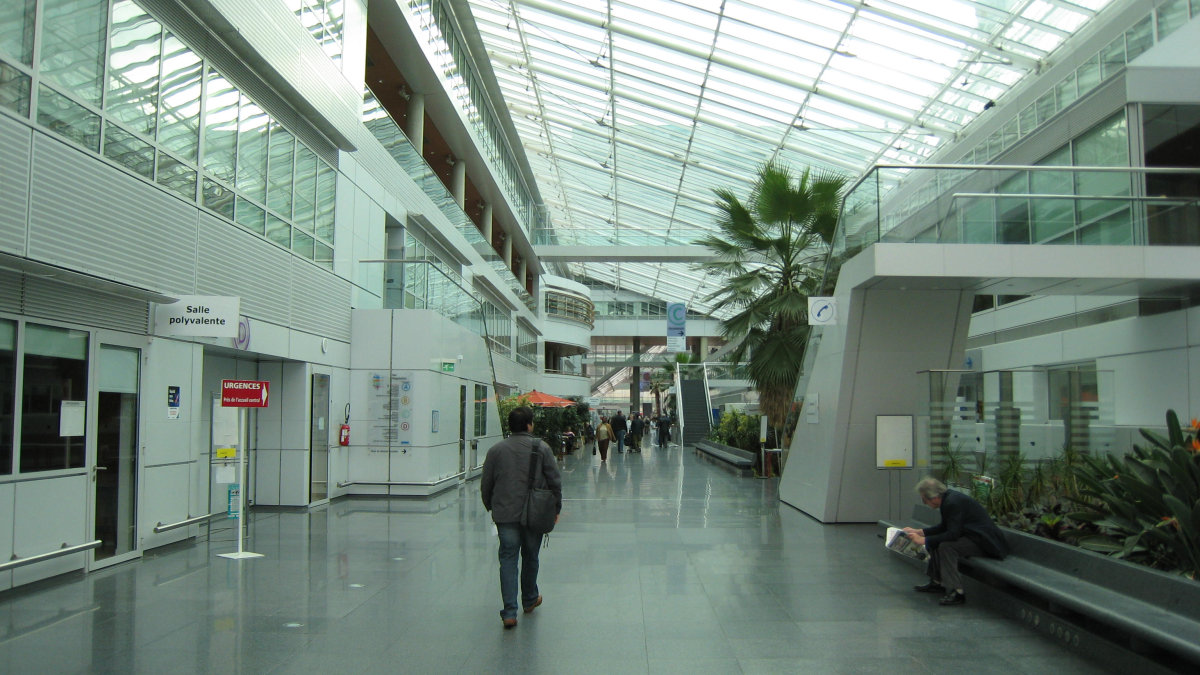 Hôpitaux de paris: ospedale europeo george pompidou