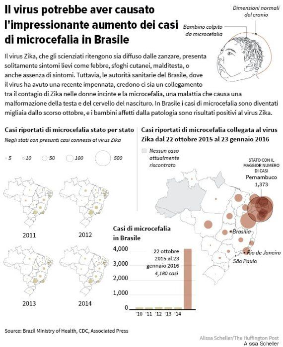 Figura1.zika